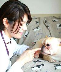 ペットの為の現代病予防対策